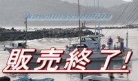 ヤマハ YAMAHA DY-39J-0A エンジン ヤマハ ・・・トン 中古船 中古漁船 遊漁船