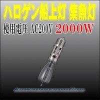 ハロゲン船上灯 200V/2KW (2000W)